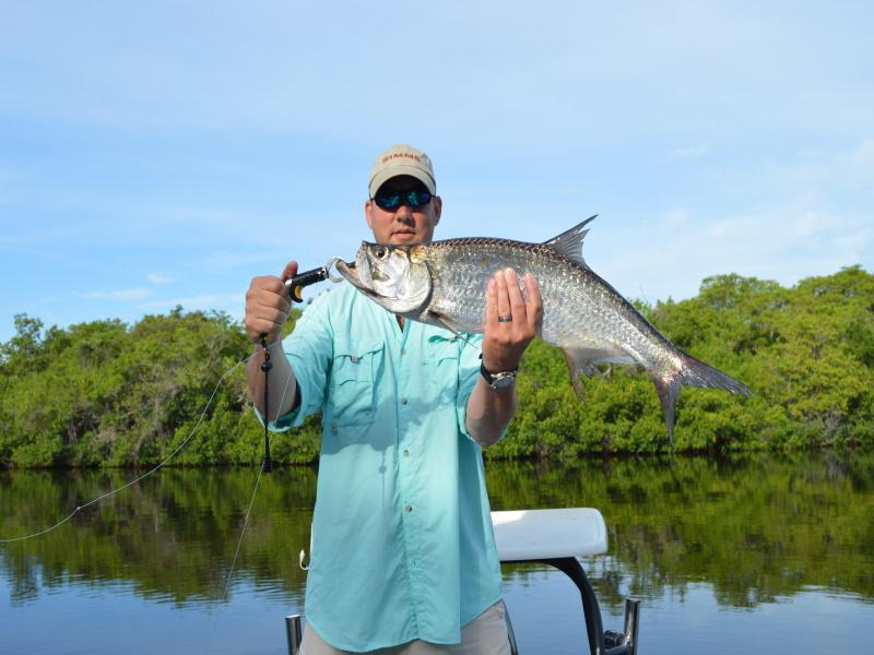 Nice Fly Caught Tarpon In Ft Myers